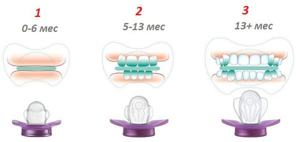 NIP соска-пустышка №2 МиссДенти с крылышками силикон 5-13 мес. Первые Зубки